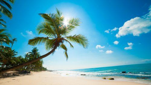 Карибы